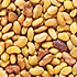 Best Nuts and Seeds - Alfalfa