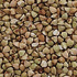 Best Nuts and Seeds - Buck-wheat