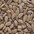Best Nuts and Seeds - Sunflower Seeds
