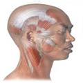 What causes headaches and headache pain