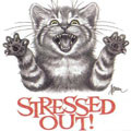 Pets and Stress Relief - Cats can help with stress